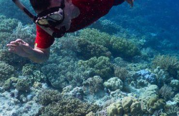 Cah Pantai underwater